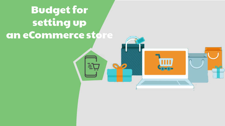 Budget for an Online Store